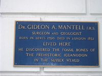 Mantell plaque