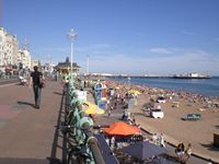 Palace Pier and seafront